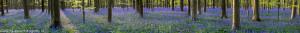 HJP_2014-04-10_0001